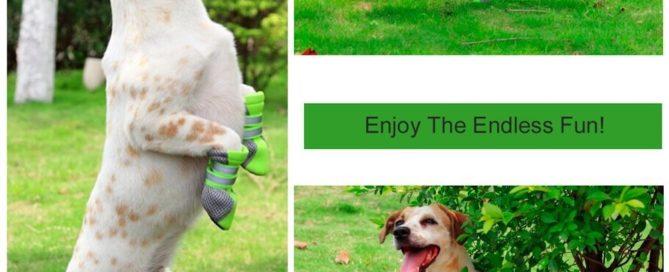 botas-antideslizantes-perro-amazon