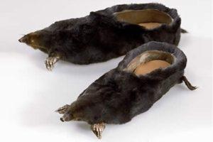 zapatos-mas-raros-del-mundo